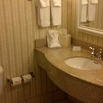 Hilton Garden Inn Green Bay Foto