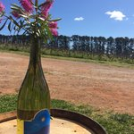 Canobolas-Smith Wines