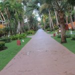 Photo of Iberostar Bavaro