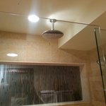 Loved the overhead shower head