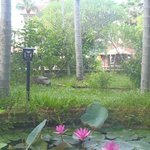 Hoi An Trails Resort Foto