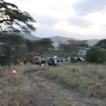 Serengeti Halisi Camp Foto
