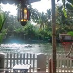 صورة فوتوغرافية لـ ‪Bamboo Lagoon Backwater Front Resort‬