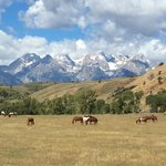 Gros Ventre River Ranch照片