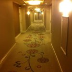 beautiful carpet in hallways to rooms