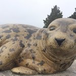 Statue out front of the marine mammal center.