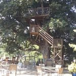 Date Night Treehouse