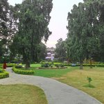 Kachipura garden in front of hotel.... Very good option for morning walk