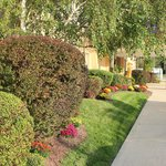 Days Hotel Landscaping Fall 2014