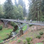 Iron Bridge, Cragside