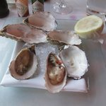 My oysters, beautiful!
