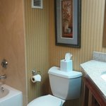 Nice spacious bathroom with amazing hot water and high pressure!