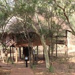 Foto di Zululand Tree Lodge