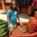 Our daughter with Jack the Hotel Cat.