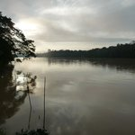 morning on the Kinabatangan river