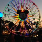 The Ferris Wheel at California Adventure, lit up at night