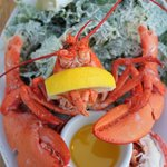 My lobster dinner - I have never seen a lobster presented this way!