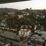 Hollywood Hills, my view each morning.