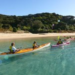 Coastal Kayakers - Day Tours