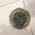 Drain in the bathroom that over flows when you have a shower