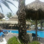 SUNSOL Isla Caribe의 사진