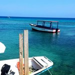 Diving and snorkeling- all day services