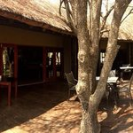 Black Rhino Game Lodge resmi