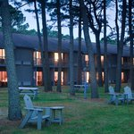 A pine forest awaits outside cozy even-numbered rooms
