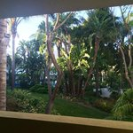 Where do you have views like this at an Independent Inn? Lovely, tropical, secret oasis
