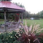 gazebo overlooking pond