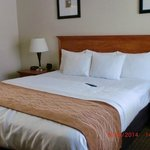 Foto de Comfort Inn Monterey by the Sea