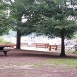 The huge wooded areas with lots of picnic tables.