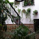Pretty town house courtyard. The owner invited us to take a look.
