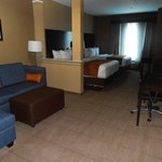 Foto de Comfort Inn & Suites Houston