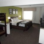 Foto de Sleep Inn & Suites Ashtabula