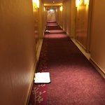 Filthy Corridor with room service trays