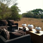 andBeyond Phinda Forest Lodge의 사진