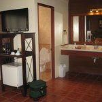 Bathroom, TV and fridge