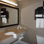 Foto de Holiday Inn Express & Suites Naples