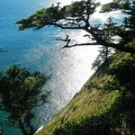 Cape Lookout State Park Foto
