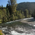 View of the McKenzie River