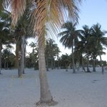 Photo of Biscayne National Park