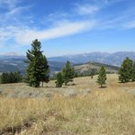 Lunchbreak view of the Madison Ranger from a meadow in the Gallatin range