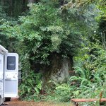 The Redwoods RV Resort照片