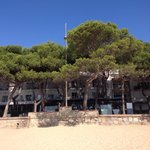 View of hotel from the beach (well, more so of the trees). You can see the first floor balconies