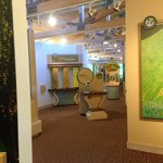 Well laid out exhibits in nature center