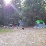 Foto Mongaup Pond Campground