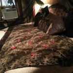Foto de 1884 Tinkerbelle's Wildwood Bed and Breakfast