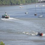 Boats on the river Dart from Greenways gard