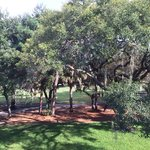 Foto di Innisbrook, A Salamander Golf & Spa Resort